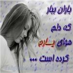 Farzad sh Profile Picture