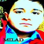 Milad Poodineh Profile Picture