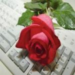 محمدخیری Profile Picture