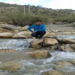 حسن بهمنی Profile Picture