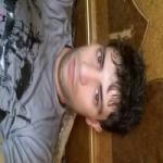 hamed Profile Picture