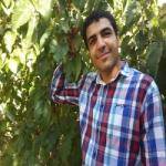 سید علی احمدی Profile Picture