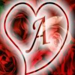 خانوم اقامونم profile picture